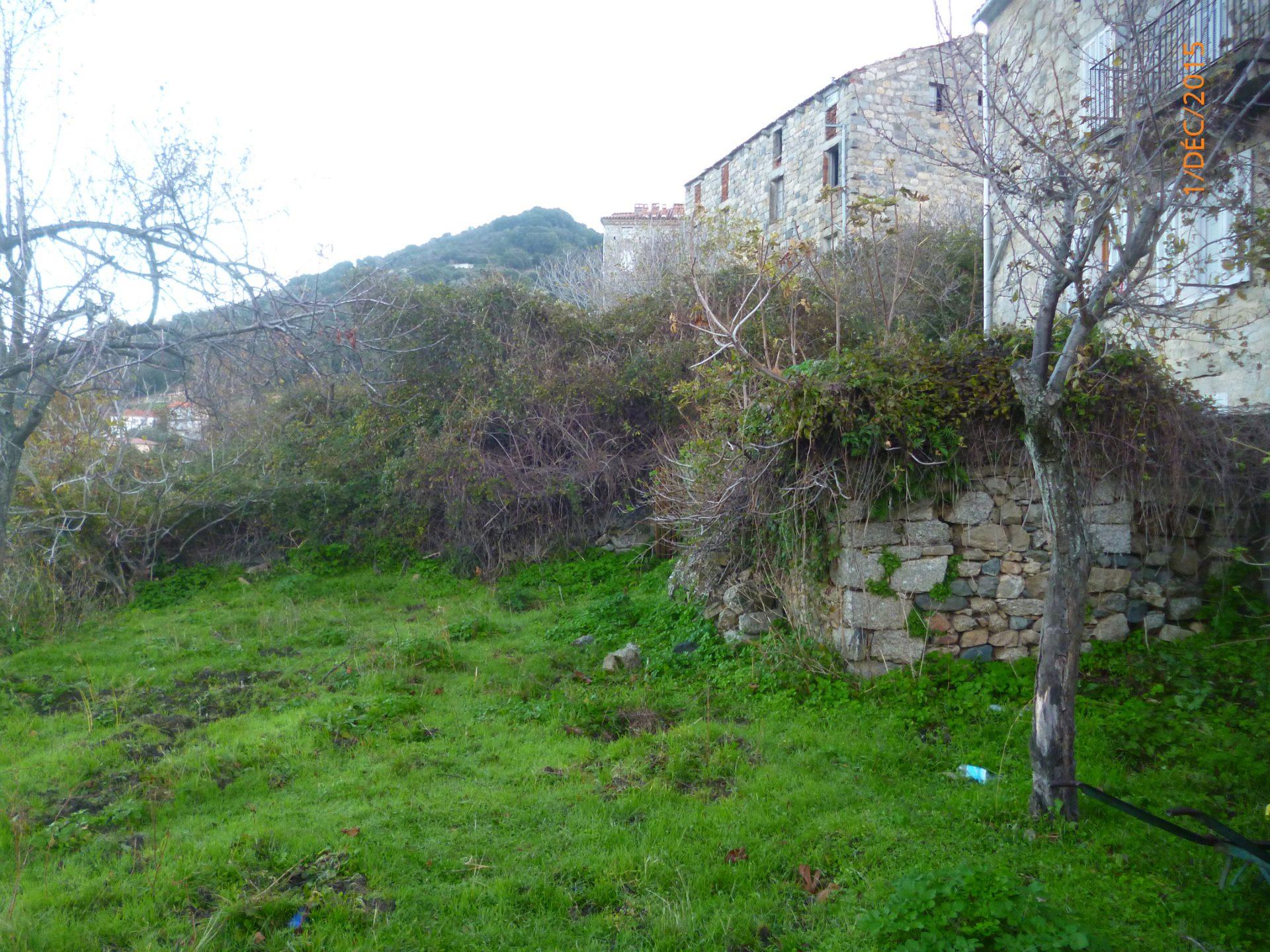 Débroussaillage à Porto-Vecchio