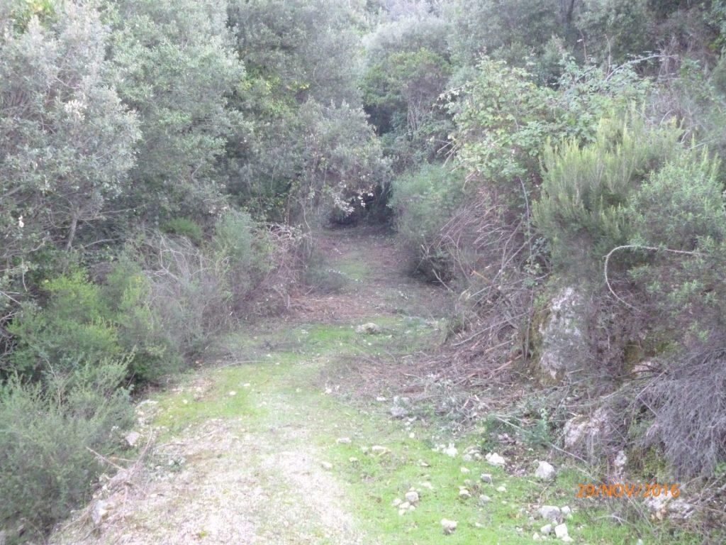 chemin chasse 4 apres